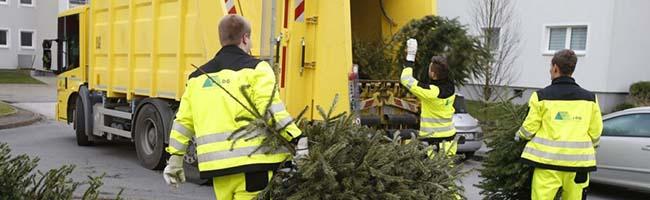 Kostenlose Weihnachtsbaumsammlung findet in Dortmund dieses Jahr eine Woche später – am 18. Januar – statt