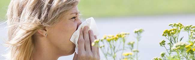 Für Allergiker*innen in Dortmund brechen harte Zeiten an: Deutlich früherer Start der Heuschnupfensaison