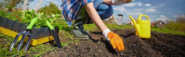 Tipp für Hobbygärtner*innen in Dortmund: Spaß bei der Gartenarbeit – aber nicht ohne Tetanus-Impfschutz
