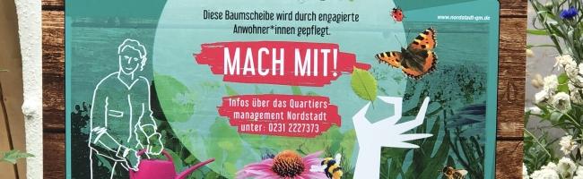 Blumige Nordstadt! – Hinweisschilder würdigen ab sofort ehrenamtliche Baumscheiben-Pflege der Anwohner*innen