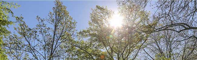 Bewahren Sie einen kühlen Kopf: Klinikum Dortmund gibt fünf wichtige Hinweise für den Sommer und den Umgang mit Hitze