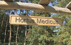 Hortus Medicus heißt der völlig neu gestaltete Heilkräutergarten im Botanischen Garten Rombergpark