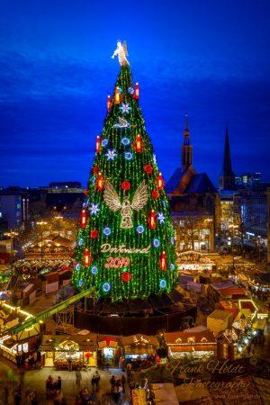 Anfang Oktober wird final entscheiden, ob der Baum aufgebaut wird. Foto: Frank Heldt