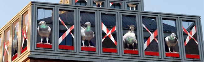 """Rundum-Erneuerung für """"Fliegende Bilder"""": Beliebte Kunst-Installation von Adolf Winkelmann wird fit für die Zukunft"""