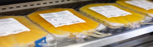 Therapiemethode für schwerkranke Corona-Patient*innen: Klinikum Dortmund sucht Genesene für Blutplasma-Spende