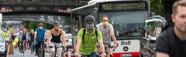Umweltverbände fordern breite Radfahrstreifen auf dem Heiligen Weg – Ruf nach regelkonformer Lösung