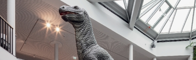 SERIE: »Stadt-Bauten-Ruhr« (4): Juwel des Nordens – Naturmuseum Dortmund