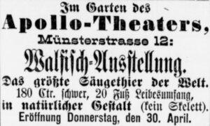 Werbeinserat (Dortmunder Zeitung, 29.04.1896)