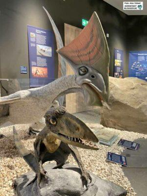 Saurier-Ausstellung im Naturmuseum. Foto: Alex Völkel
