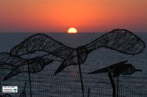 Sonnenuntergang in Netanya - davor eine Kunstinstallation mit Friedenstauben. Foto: Alex Völkel