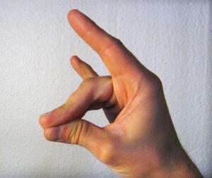 """Der """"Wolfsgruß"""" der Grauen Wölfe. Dieses Handzeichen hat aber auch viele andere Bedeutungen. Foto: Wiki"""