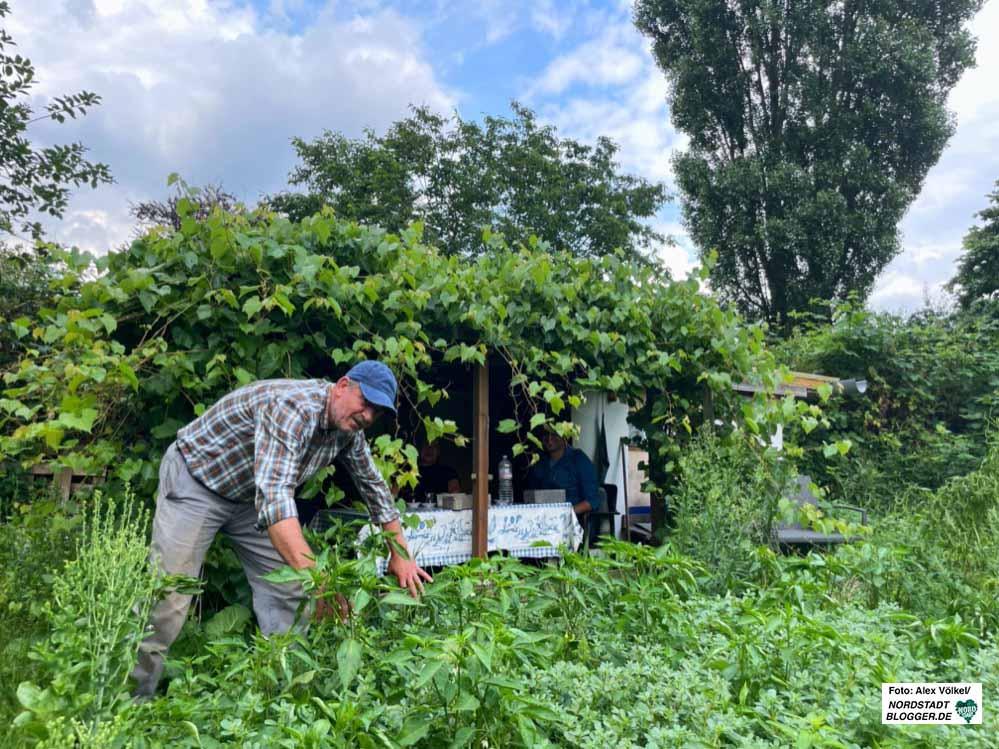 """Senol Muslu, der Vorsitzende des Gemüsegartenvereins """"Yesil Bostan"""". Foto: Alex Völkel"""