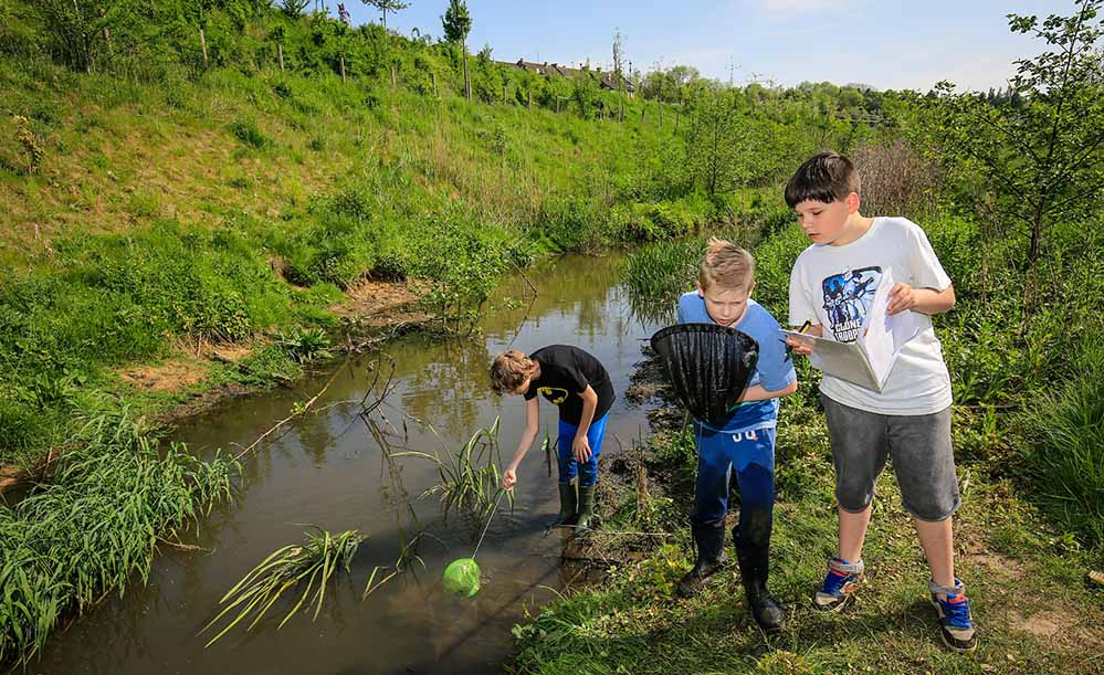 """Am """"Blauen Klassenzimmer"""" direkt an der Emscher in Dortmund können Kinder das Gewässer genau unter die Lupe nehmen."""
